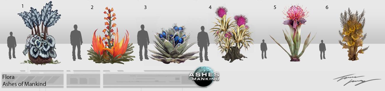 AOM Flora concepts